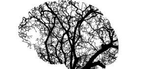 Storia della salute mentale
